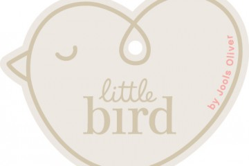 little bird icon-1