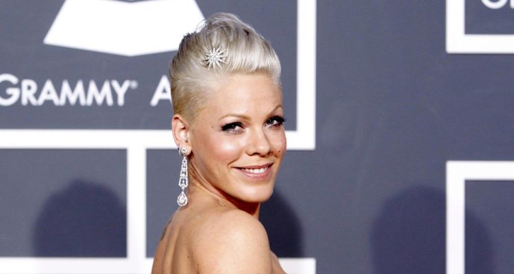 Singer Pink arrives on the red carpet at the 52nd annual Grammy Awards in Los Angeles January 31, 2010.  REUTERS/Mario Anzuoni  (MUSIC-GRAMMYS/ARRIVALS) (UNITED STATES - Tags: ENTERTAINMENT)