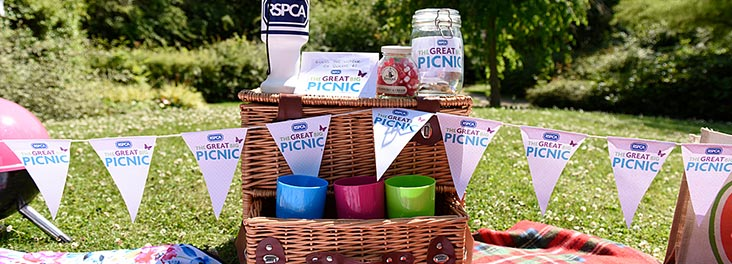 GreatBigPicnic